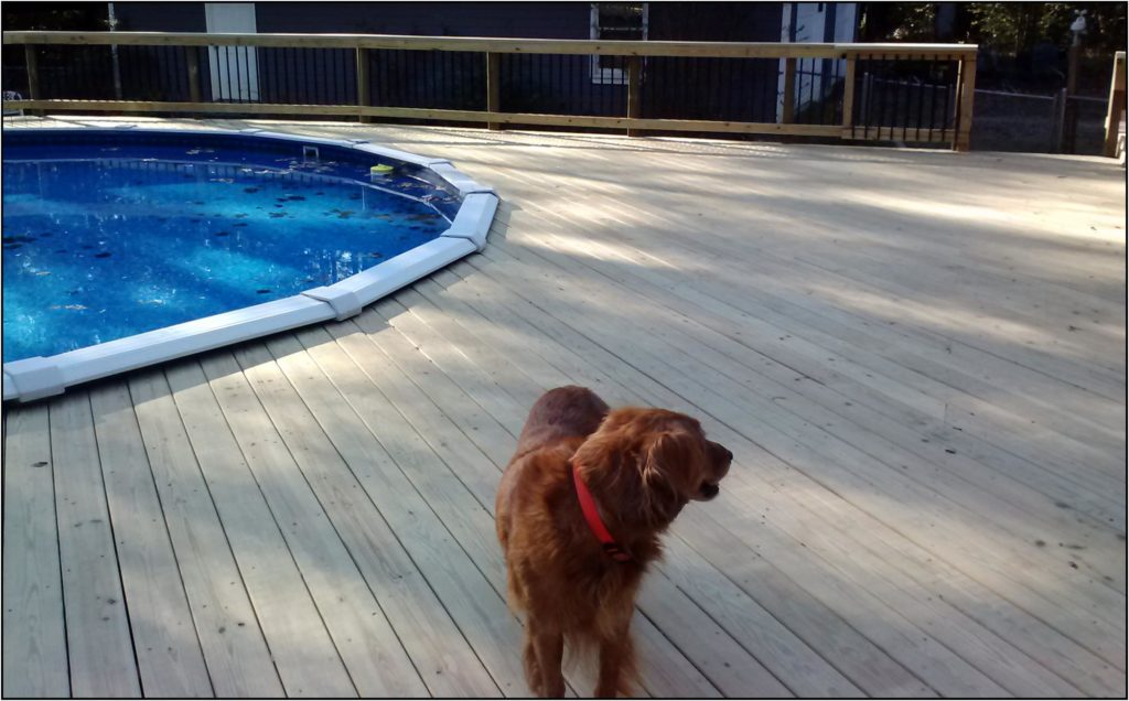 Forsyth Ga-deck-above ground pool
